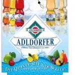 Kastenstecker Adldorfer